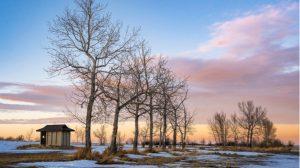 シューベルト歌曲集『冬の旅』